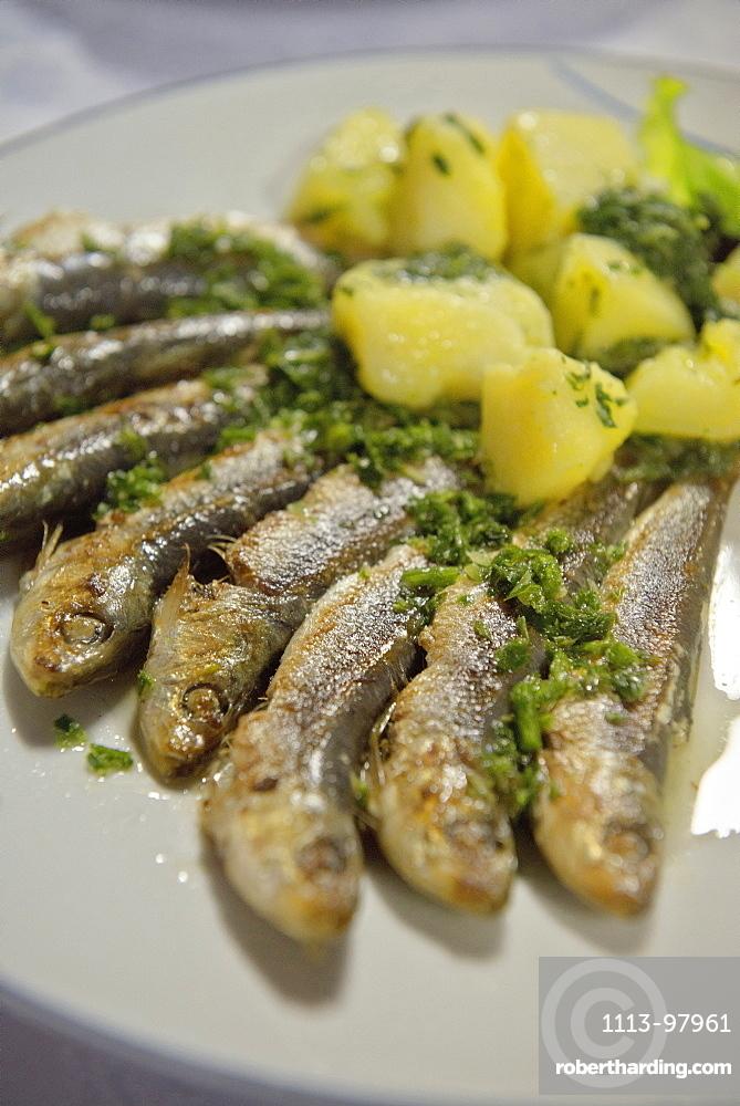 Grilled sardines with potatoe dish, Adria coast, Mediterranean Sea, Primorska, Slovenia