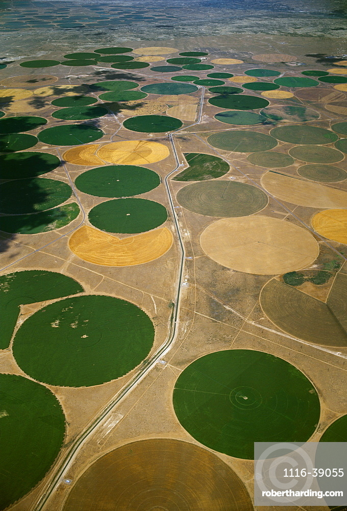 Agriculture - Aerial view of center pivot irrigated circular agricultural fields / near Farmington, New Mexico, USA.