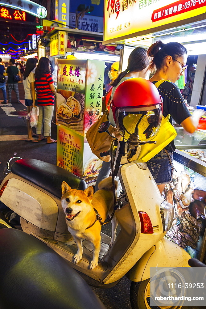 Dog standing on a motorcycle at the Linjiang Street Night Market, Taipei, Taiwan
