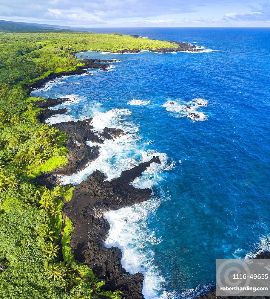 An aerial view of the coastline at Waianapanapa State Park, Hana, Maui, Hawaii. The famous black sand beach is in the bay at the top of the frame. Five images were combined for this stitched composite, Hana, Maui, Hawaii, United States of America