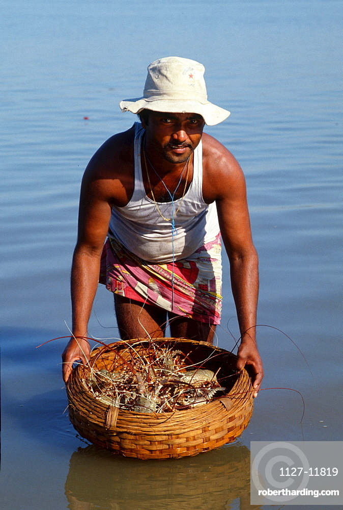 Man with basket with Lobsters, Mumbai, India / Bombay, Lobster
