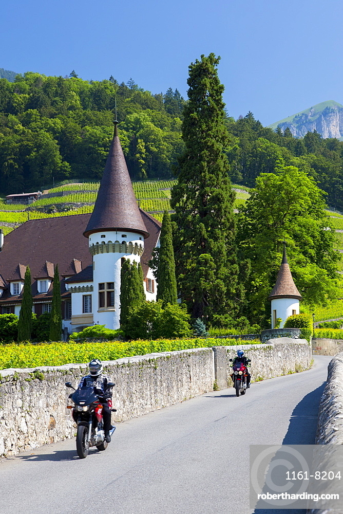 Wine estate, Chateau Maison Blanche, at Yvorne in the Chablais region, Vaud, Switzerland, Europe