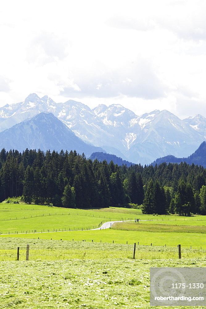 An alpine view near Ofterschwang in Allgäu in Bavaria, Germany