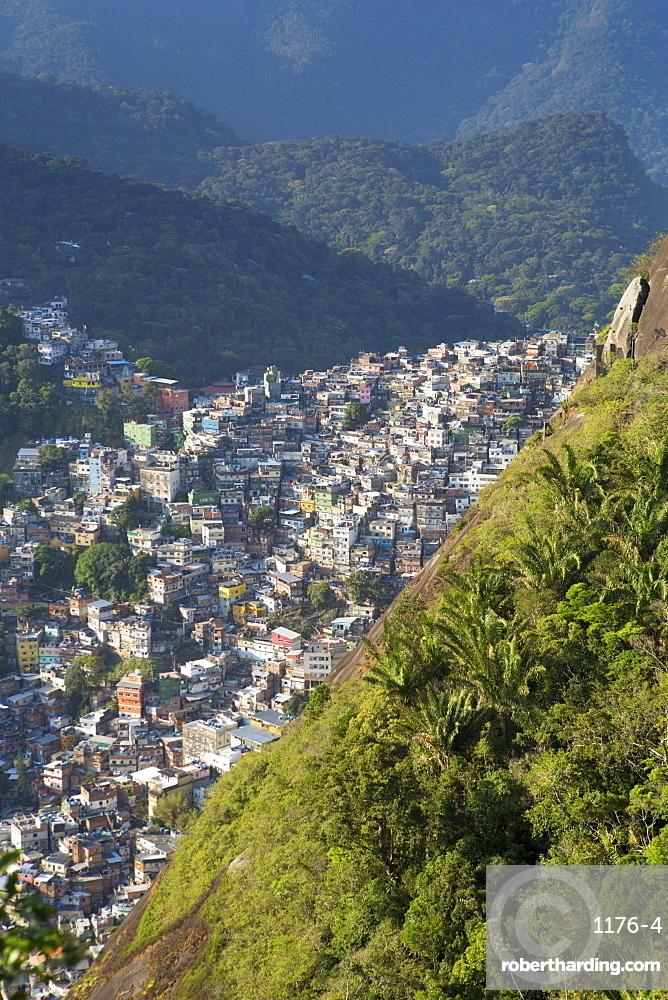 View of Rocinha favela and the forest of Tijuca National Park, Rio de Janeiro, Brazil, South America