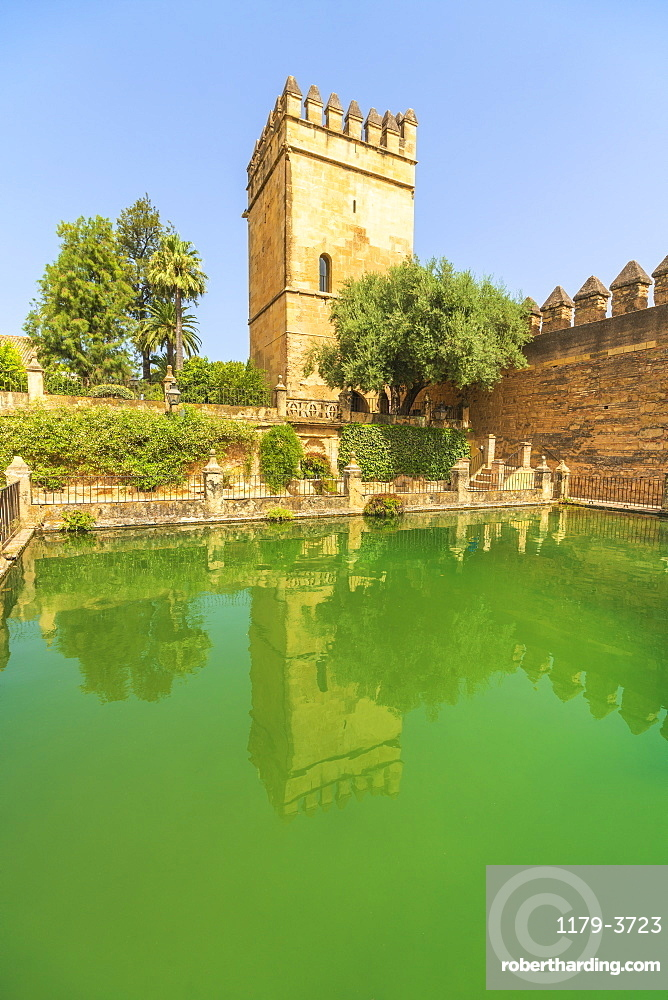 Torre de los Leones (Tower of the Lions) reflected in a pool, Alcazar de los Reyes Cristianos, Cordoba, UNESCO World Heritage Site, Andalusia, Spain, Europe