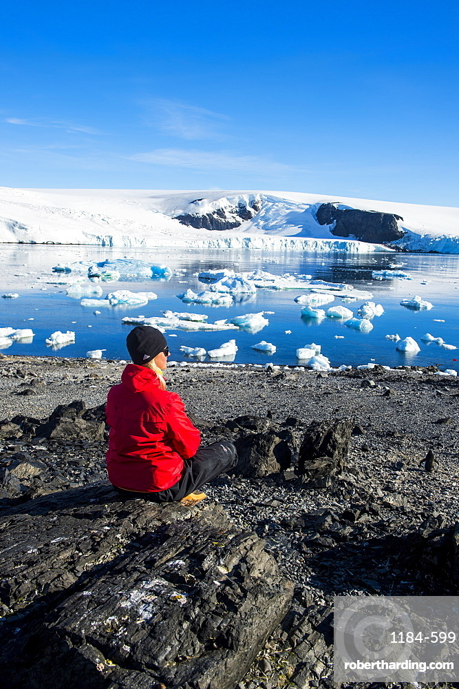 Tourist admiring the beautiful bay filled with icebergs in Hope Bay, Antarctica, Polar Regions