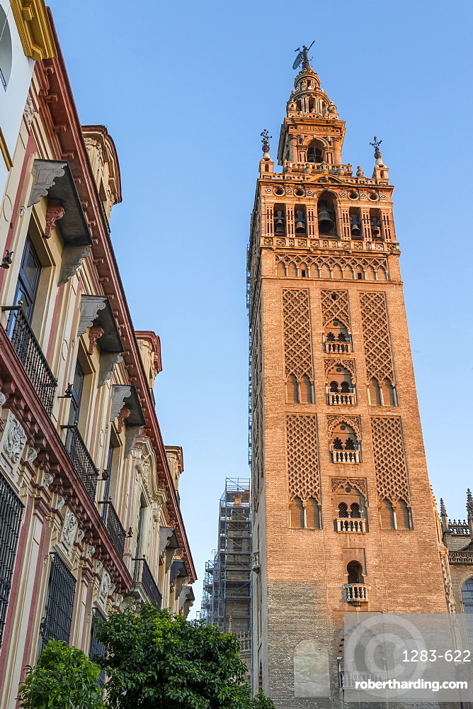 Giralda Bell tower at sunset, UNESCO World Heritage Site, Seville, Andalusia, Spain, Europe