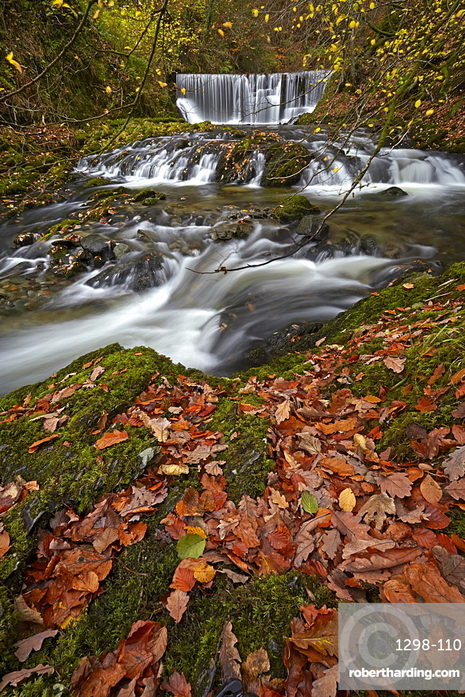 Autumn at Stock Ghyll, Ambleside, Lake District National Park, UNESCO World Heritage Site, Cumbria, England, United Kingdom, Europe