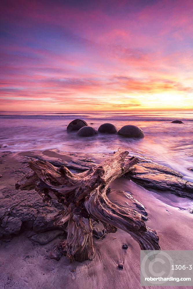 Moeraki Boulders with dramatic sunrise, Otago, South Island, New Zealand, Pacific