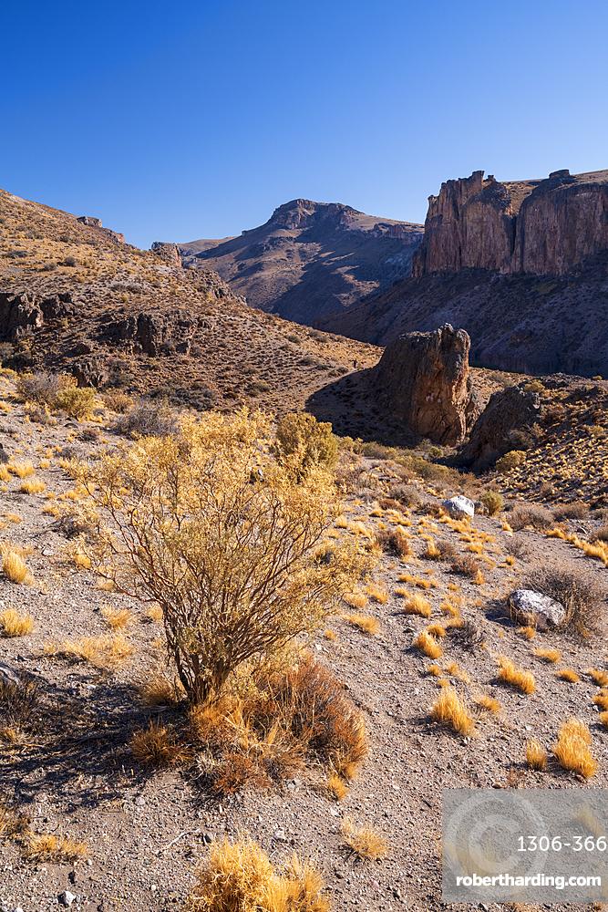 Canyon of the Rio Pinturas near Cueva de los Manos, Patagonia, Argentina, South America