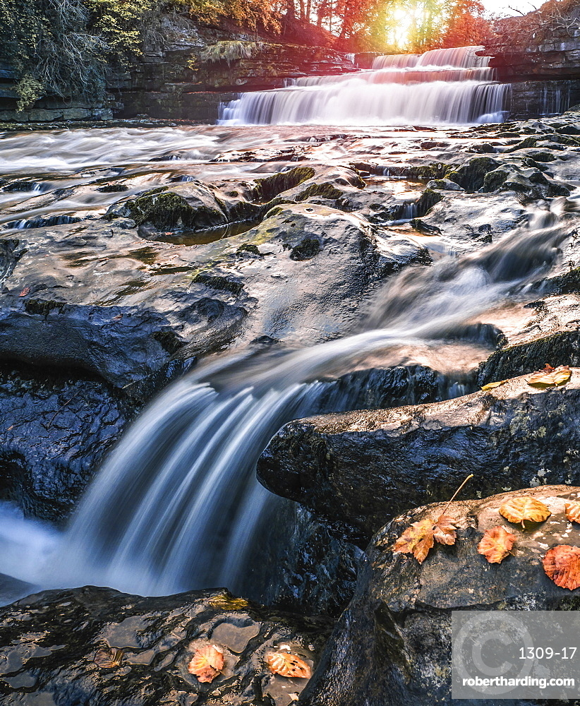 Lower Aysgarth Falls on the River Ure, autumn, Wensleydale, Yorkshire Dales National Park, North Yorkshire, England, United Kingdom, Europe