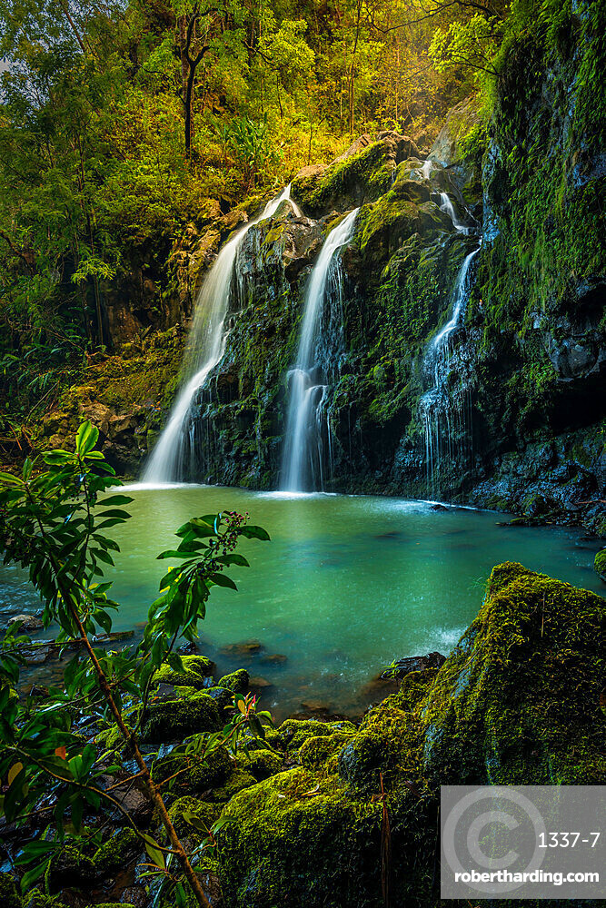Upper Waikani Falls (Three Bears Falls) in soft sunset light catching early evening mist, Maui, Hawaii, United States of America, Pacific