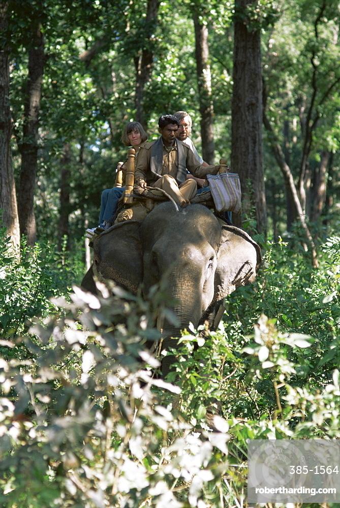 Tourists on elephant back, Kanha National Park, Madhya Pradesh state, India, Asia