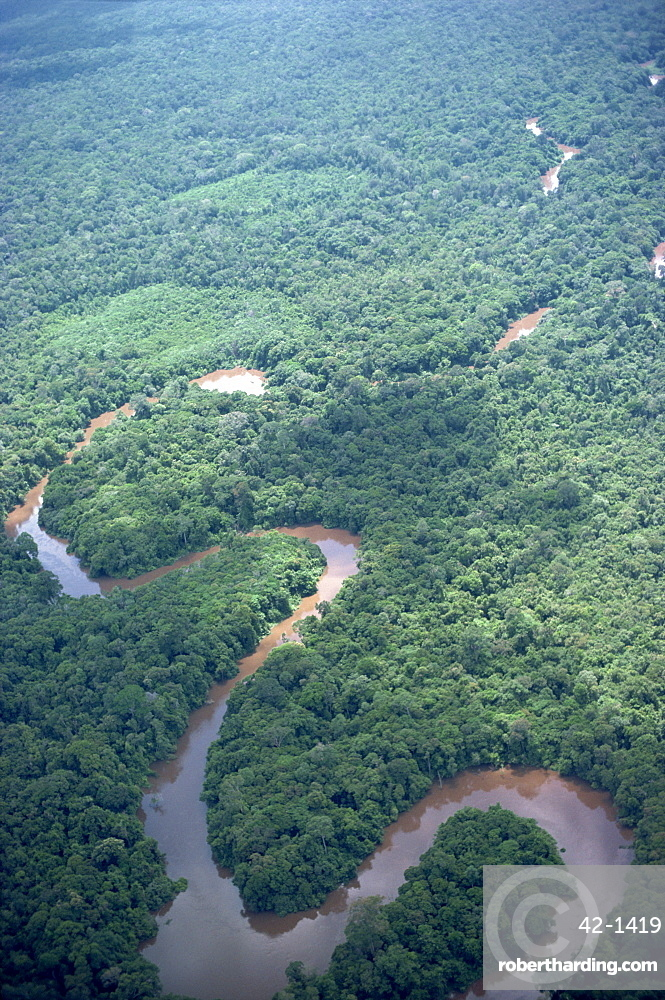 Aerial view of the meandering Belait River, Brunei, island of Borneo, Asia
