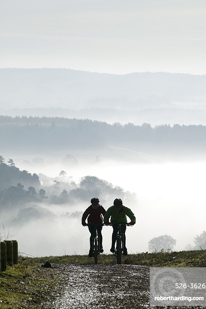 Two mountain bikes climbing up hill, silhouetted against mist, Newlands Corner, near Guildford, Surrey Hills, Surrey, England, United Kingdom, Europe