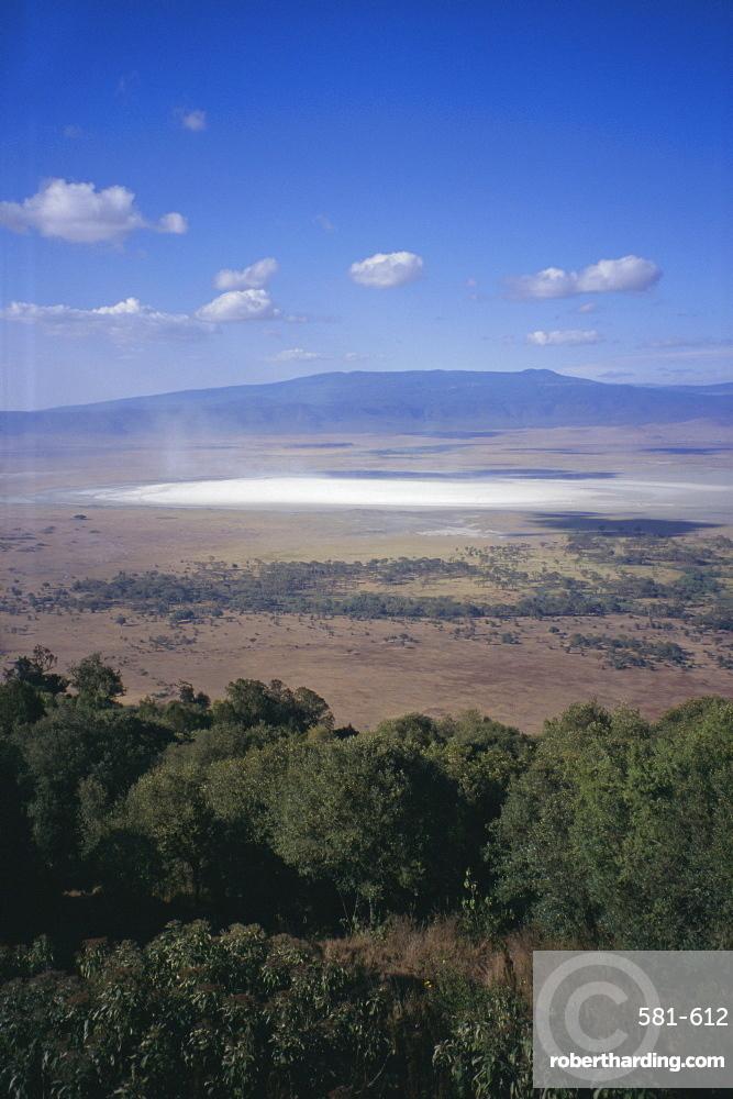 Wildlife, mossy trees, clouds and salt lake, Ngorongoro Crater, Ngorongoro Conservation Area, Tanzania, East Africa, Africa