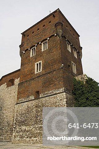 Royal Castle area, Krakow (Cracow), UNESCO World Heritage Site, Poland, Europe