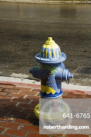 Painted fire hydrant, Key West, Florida, United States of America, North America