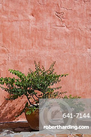 Camino Real Hotel in the 16th century Convent of Santa Catalina, Oaxaca City, Oaxaca, Mexico, North America