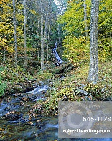 Moss Glen Falls, Green Mountain National Forest, Vermont, USA