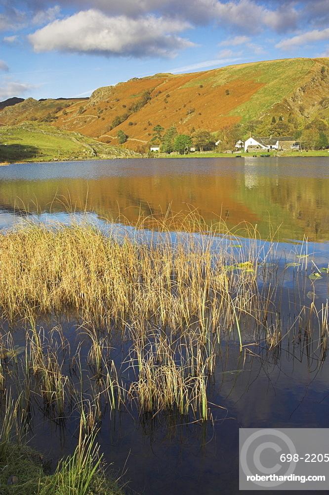 Autumn colours, Watendlath Tarn, Borrowdale, Lake District National Park, Cumbria, England, United Kingdom, Europe