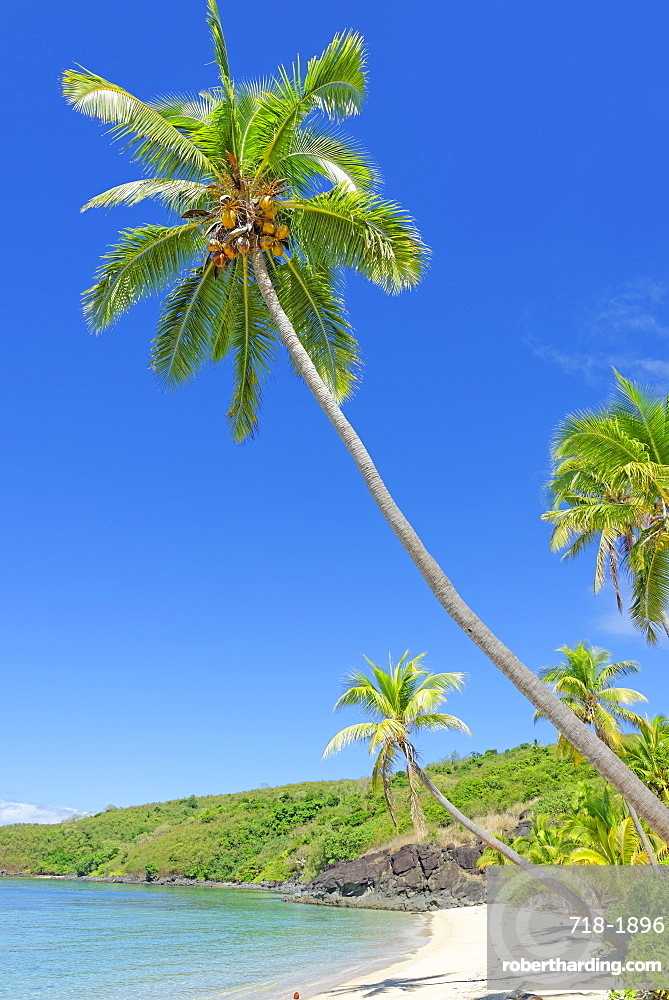 Tropical beach, Drawaqa Island, Yasawa island group, Fiji, South Pacific islands, Pacific