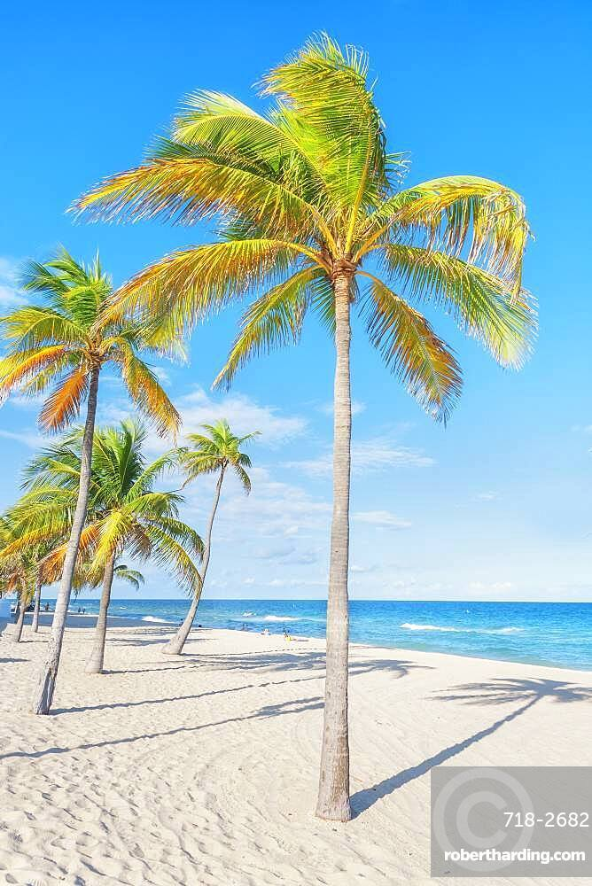 Fort Lauderdale beach, Fort Lauderdale, Broward County, Florida, United States of America, North America