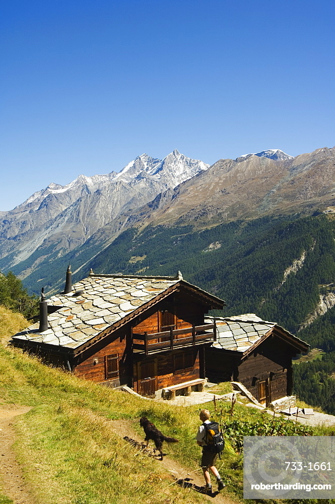 Hiker and dog on trail in front of traditional slate roofed house, Zermatt Alpine Resort, Valais, Switzerland, Europe