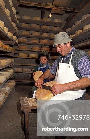 Cheese preparation, Malga Monte Sole Alta, Val di Rabbi, Stelvio national park, Trentino Alto Adige, Italy