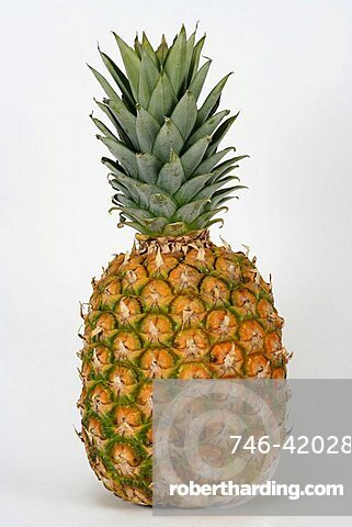 Pineapple, Italy