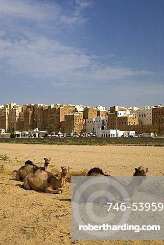 Old city built with mud bricks, Shibam, Yemen, Middle East