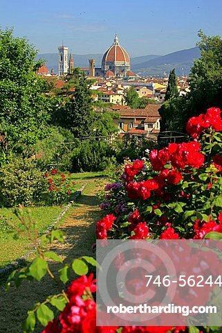 Rose garden, Florence,Tuscany,Italy
