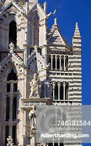 Siena Dom detail,Siena city,Tuscany,Italy,Europe.