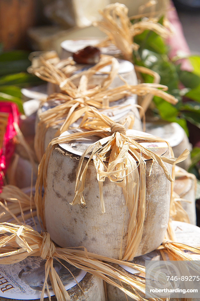 Berra, Typical Sheep Cheese, Factory La Poiana, Castemagno, Cuneo, Piedmont, Italy, Europe