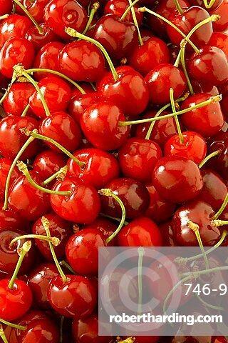 Cherries, Italy