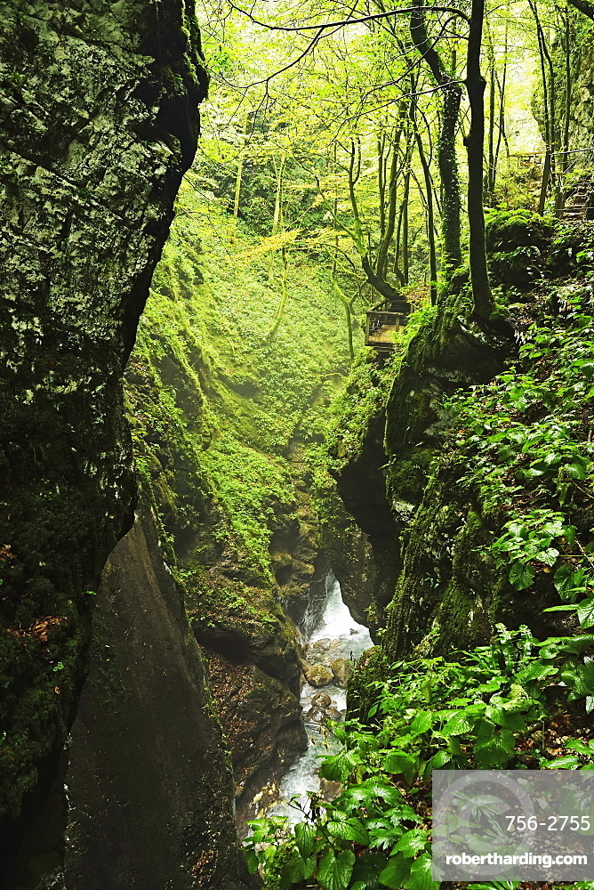 Tolmin Gorge, Tolmin, Slovenia, Europe