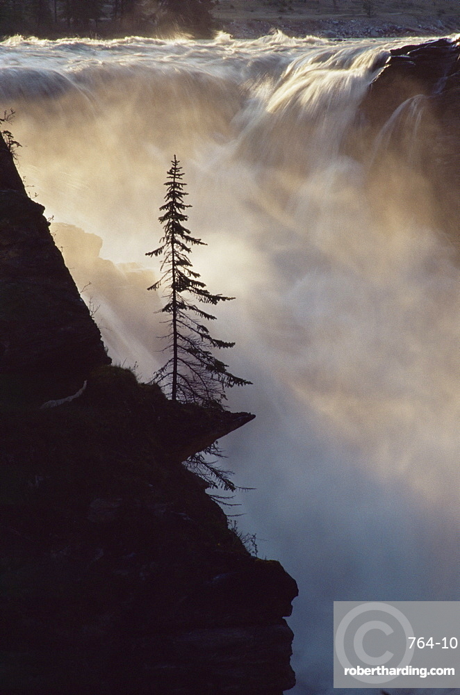 Athabasca Falls, Jasper National Park, UNESCO World Heritage Site, The Rockies, Alberta, Canada, North America