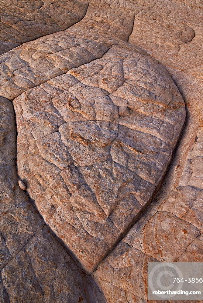 Erosion pattern in Navajo sandstone, Grand Staircase-Escalante National Monument, Utah, United States of America, North America