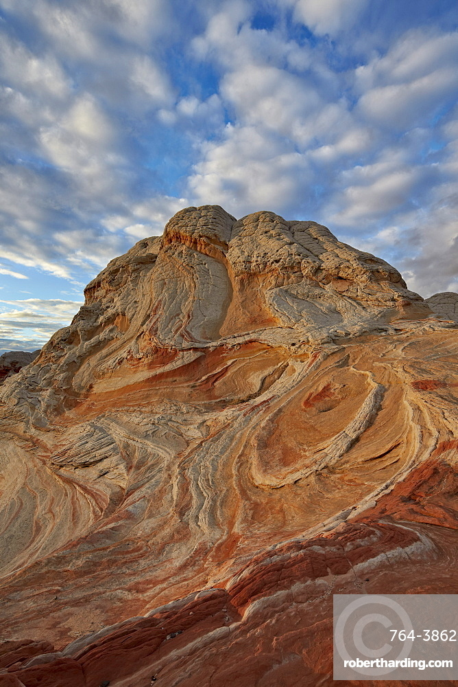 Sandstone hill with swirly layers, White Pocket, Vermillion Cliffs National Monument, Arizona, United States of America, North America