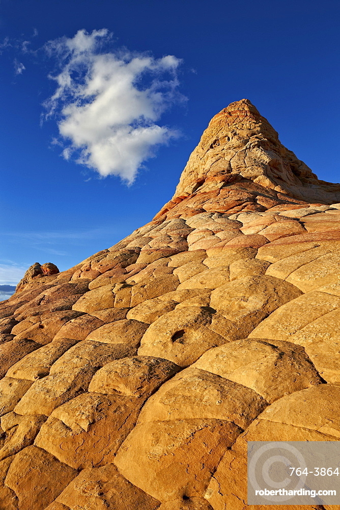 Sandstone hill with brain texture and a cloud, Coyote Buttes Wilderness, Vermillion Cliffs National Monument, Arizona, United States of America, North America