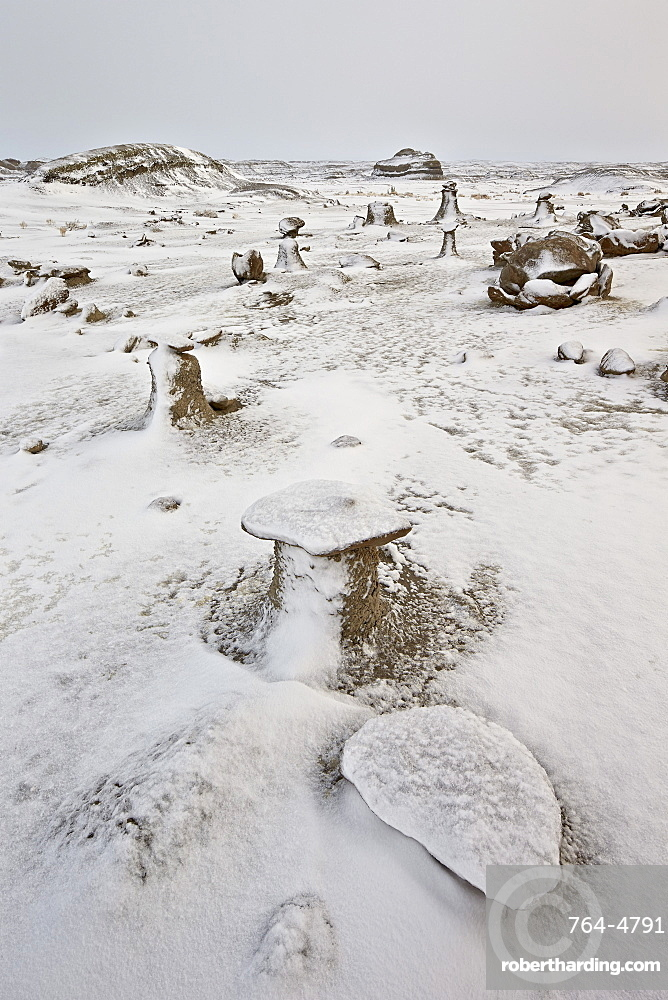 Eroded boulders at the Egg Factory with fresh snow, Bisti Wilderness, New Mexico, United States of America, North America