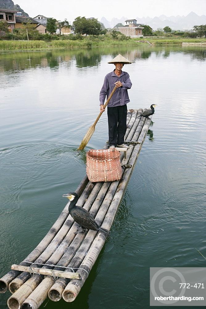 Fisherman with cormorants, Li River, Yangshuo, Guangxi Province, China, Asia