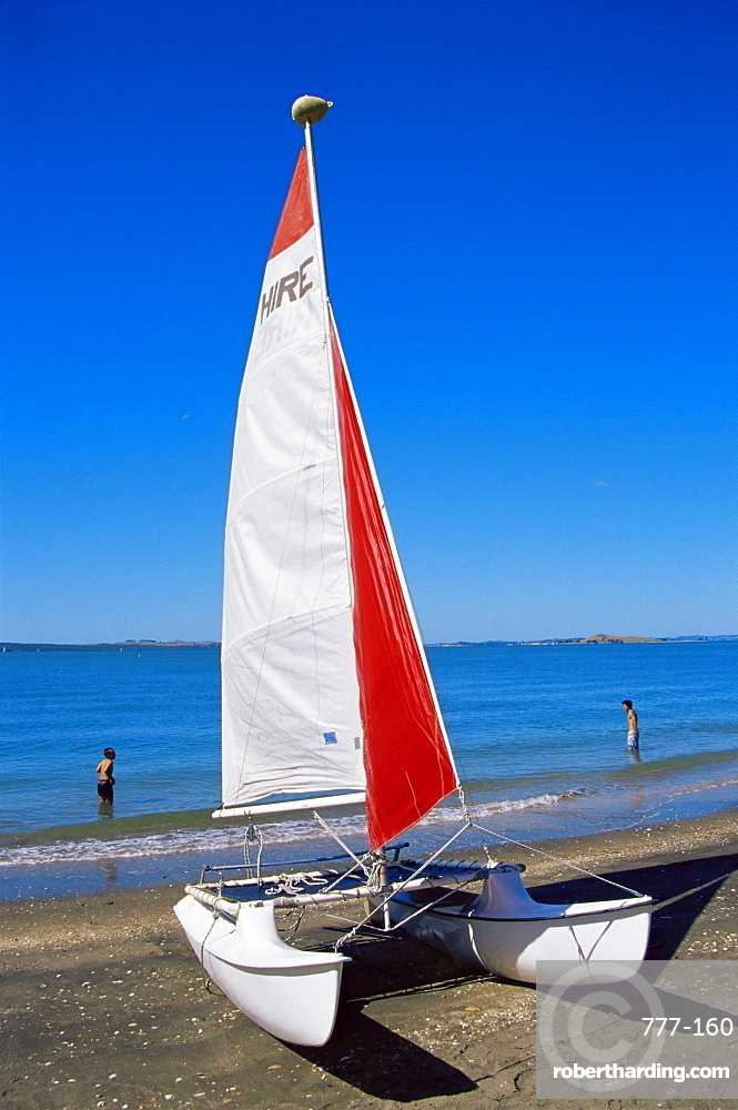 Mission Beach, Auckland, North Island, New Zealand, Pacific