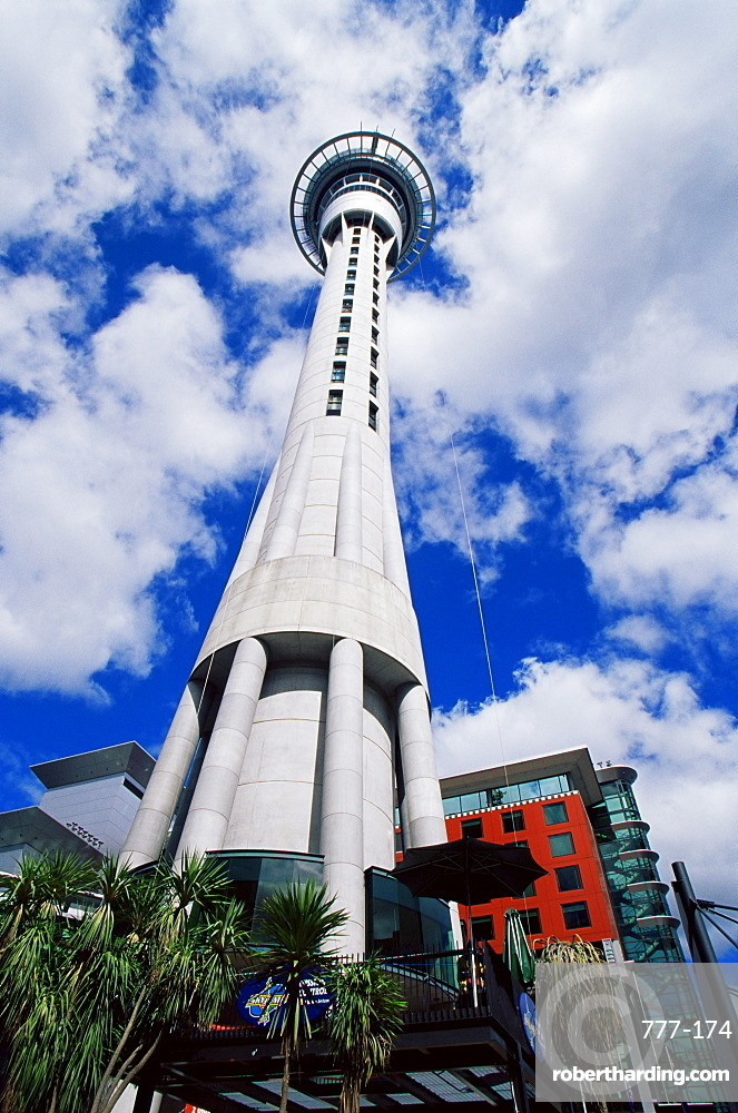 Sky Tower, Auckland, North Island, New Zealand, Pacific