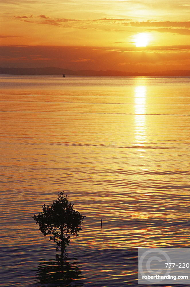 Sunset at Thames Bay, Coromandel region, North Island, New Zealand, Pacific