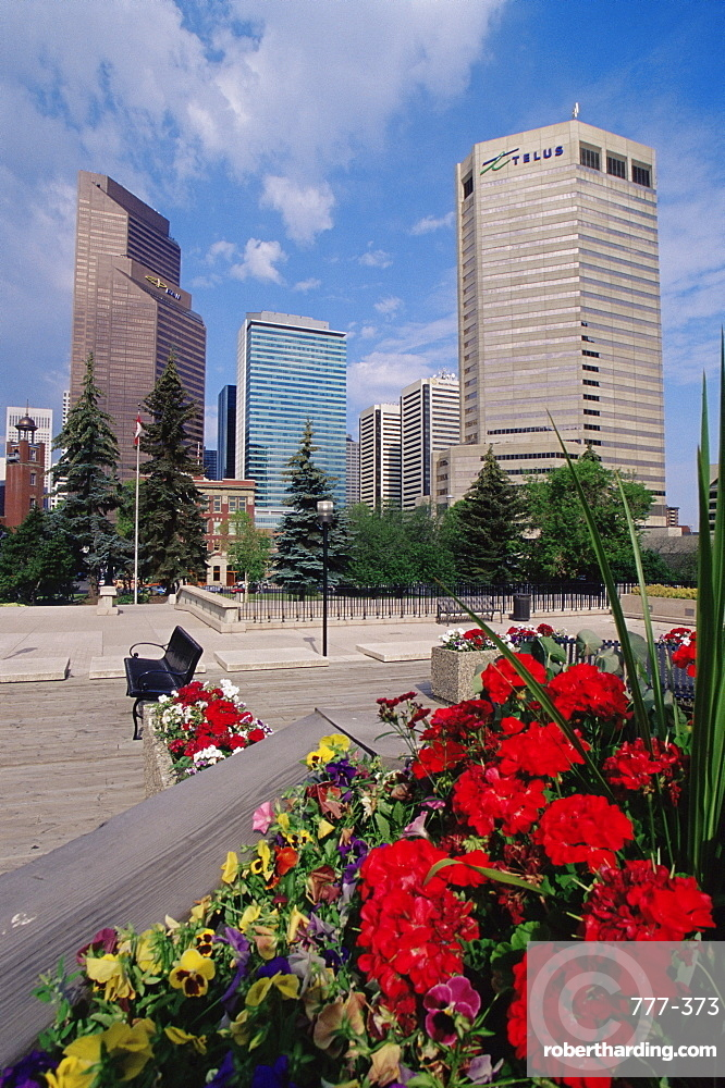 Skyline from Board of Education, Calgary, Alberta, Canada, North America