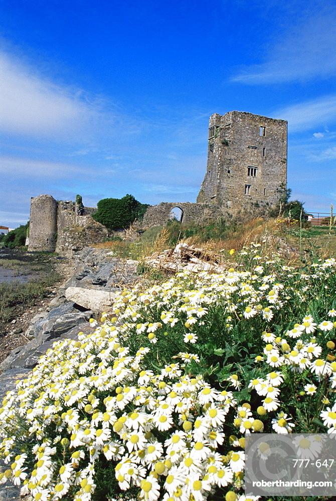 Granagh Castle, County Kilkenny, Leinster, Republic of Ireland, Europe