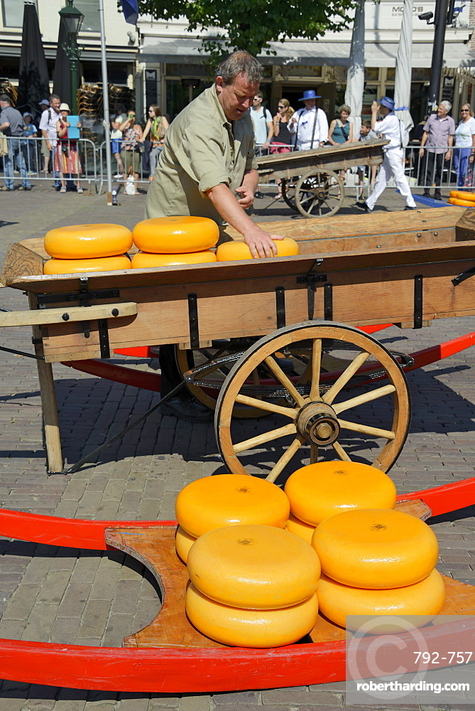 Loading cheese wheels from a wooden sledge onto a traditional wooden cart, Waagplein Square, Alkmaar, North Holland, Netherlands, Europe