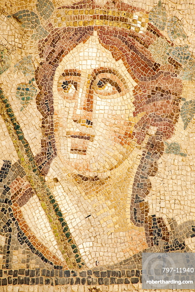 Turkey, Anatolia, Ephesus, Mosaic on the floor of one of the terrace houses.