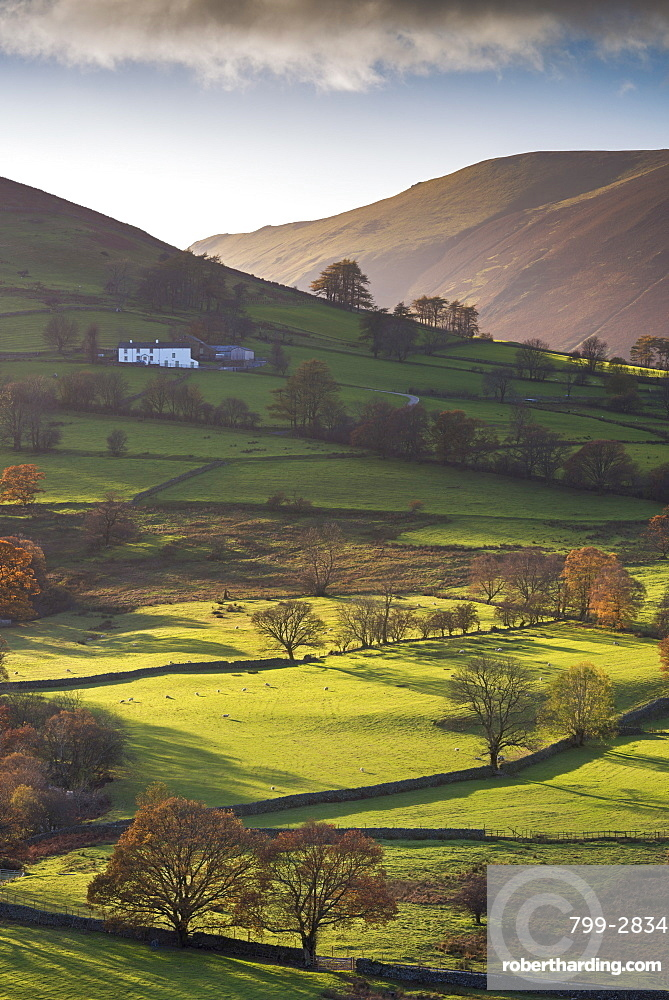 High Snab farmhouse in the beautiful Newlands Valley in autumn, Lake District National Park, Cumbria, England, United Kingdom, Europe